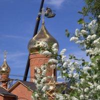 Новый храм 3 :: Василий