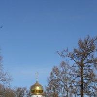 Под голубым небом Царскоселья... :: Tatiana Markova