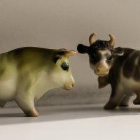 Бычек и коровка :: vcherkun