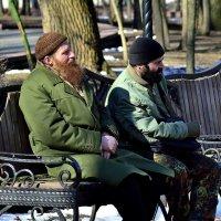 Отдых бородачей :: Юрий Анипов