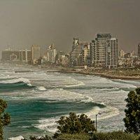 Tel-Aviv :: Igor Bulkin