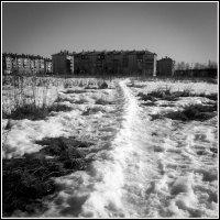 До калитки путь неблизкий... :: Дмитрий Калмыков