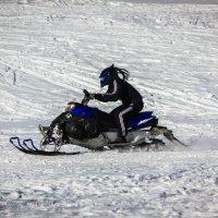 """Хищник"" на снегоходе... :: Дмитрий Перов"