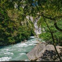 горная речка :: Galina