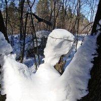 Снежный ангел :: Лидия (naum.lidiya)