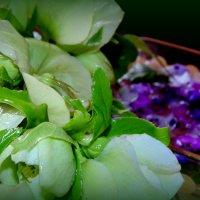 Первые весенние цветы)))))))) :: Lilek Pogorelova