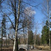 В Гатчинском парке. :: ТАТЬЯНА (tatik)