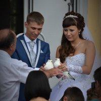 Летите голуби, летите! :: Валерий Лазарев