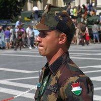 Военнослужащий Венгрии :: Андрей ТOMА©
