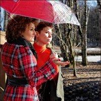 Весенний дождь :: Наталья Rosenwasser
