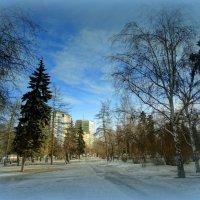 Городской пейзаж :: Натали Акшинцева