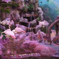 Тропические декорации, рельеф  производит некоторое впечатление натуральности :: Елена Павлова (Смолова)