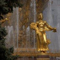 в золоте и освещенная солнцем :: Олег Лукьянов