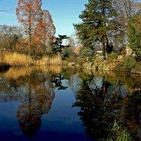 Зеркальный пруд :: Alexander Andronik