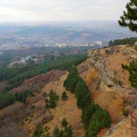 Кисловодский парк. Серые скалы. :: Vladimir 070549