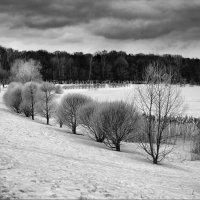 Лебедянский пруд в начале марта :: Ирина Лепнёва