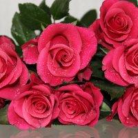 Букет из красных роз - :: Mariya laimite