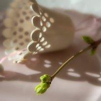 Весны благостные звоночки... :: Bosanat