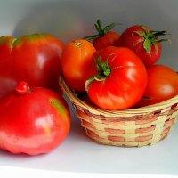 Про томаты. :: nadyasilyuk Вознюк