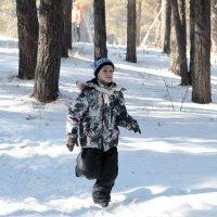 Кто на лыжах а я бегом :: Viktor Сергеев