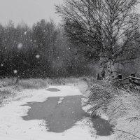 А снег идет... :: Stream