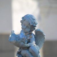 А может это и твой ангел? :: Tatiana Markova