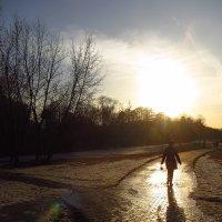 IMG_3605 - Снимаю навстречу солнцу :: Андрей Лукьянов