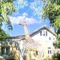 После Пушкина и Жираф подошел... :: Фома Антонов