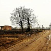 У деревни :: Василий Хорошев