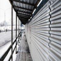 В серости дней тонель :: Виктория Большагина