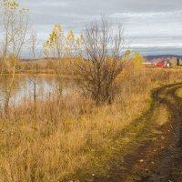 Дорога вдоль реки :: Любовь Потеряхина