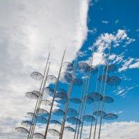 Солоникские зонтики :: Petr Popov