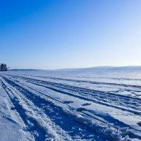 Прощание с зимою :: Светлана Игнатьева