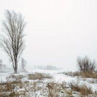 Зима :: Константин Бобинский