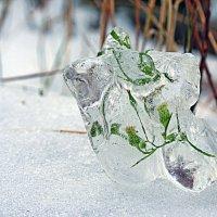 В ледяном плену. :: Николай Масляев