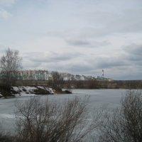 8-й микрорайон Митино :: Людмила Монахова