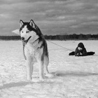 покатушки :: photographer Anna Voron