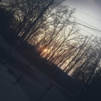 Весенний закат :: Valeriya Voice