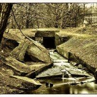 Весна сегодня :: алекс дичанский