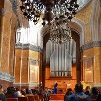 В органном зале :: Татьяна Кретова