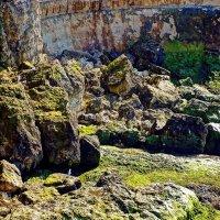 скалы Мелового берега :: Александр Корчемный