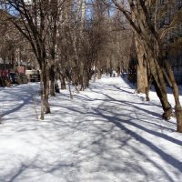 Всегда снегу рада. )) :: Елена Дёмина