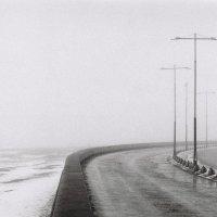 Туман перед весной :: Филипп Рабачев