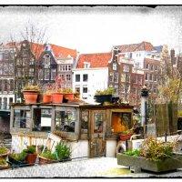 Дом на воде в Амстердаме. :: Стас Шапошников