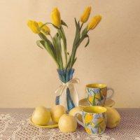 Желтые тюльпаны2 :: Алина