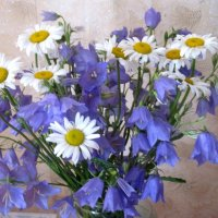 Веселый, летний букетик полевых цветов :: Елена Семигина