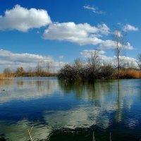 Весенний вид на озеро :: Юрий Анипов