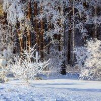 зимняя сказка :: Виктор Ковчин