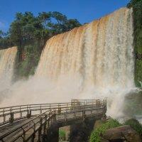 Один из водопадов Игуасу :: Irina Shtukmaster