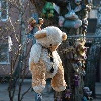 Из жизни игрушек. Обезьянки повесили медведя ... :: Александр Степовой